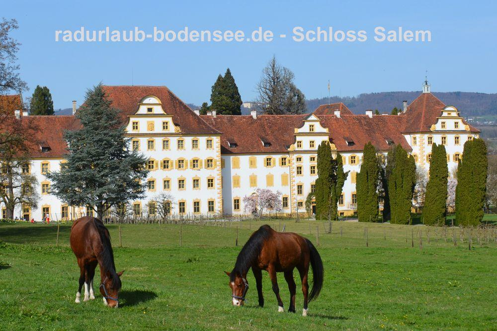 Cycling Lake Constance - Salem Castle