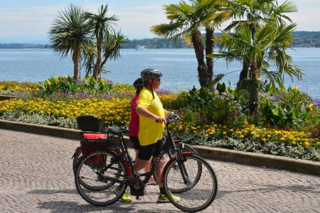 Short Upper Lake Cycle Tour